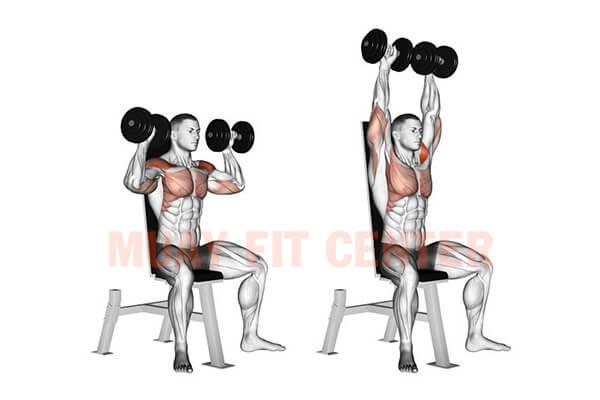 bài tpậ Dumbbell Shoulder Press