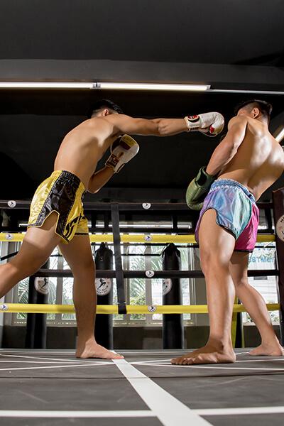Muay Thái và Vovinam, môn võ nào mạnh hơn